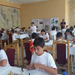 Summer Chess Festivals in Romania